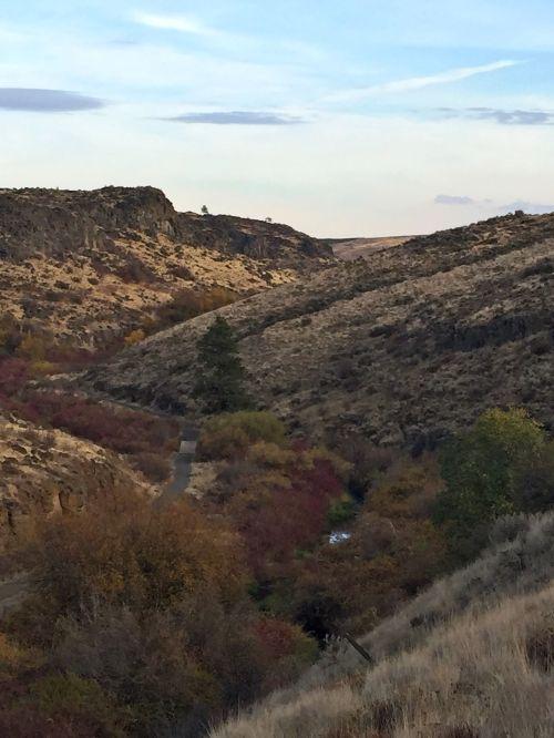 Cowiche Canyon, Yakima, WA